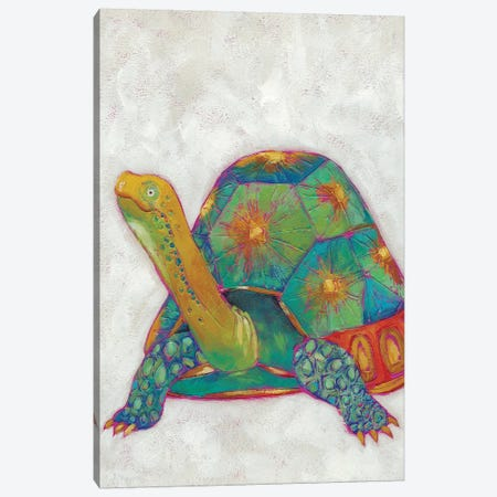 Turtle Friends II Canvas Print #ZAR136} by Chariklia Zarris Canvas Art Print