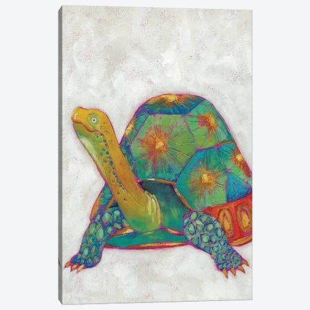 Turtle Friends II Canvas Print #ZAR136} by Chariklia Zarris Canvas Art Print