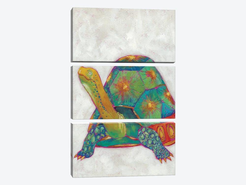 Turtle Friends II by Chariklia Zarris 3-piece Canvas Artwork
