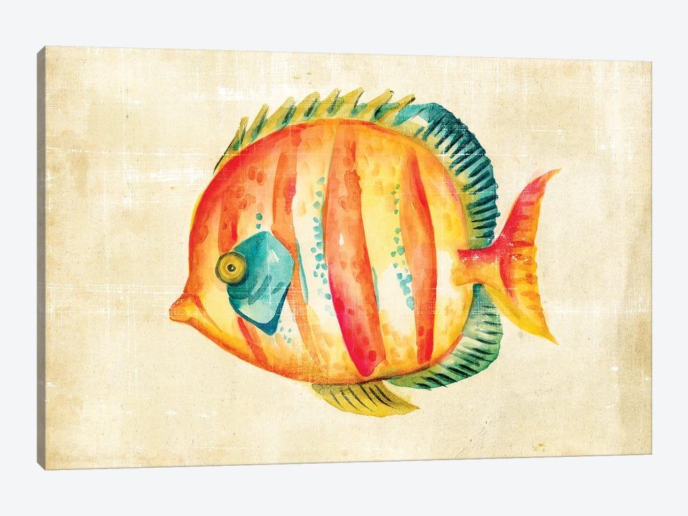 Aquarium Fish II Art Print by Chariklia Zarris | iCanvas