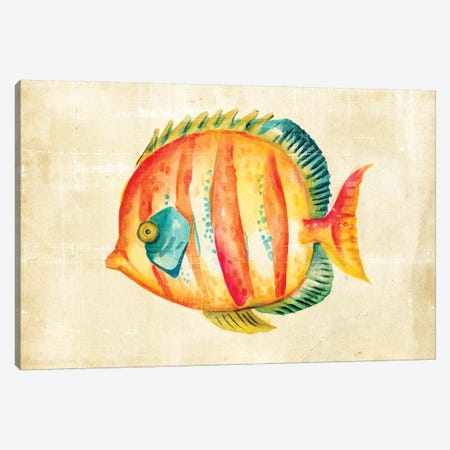 Aquarium Fish II Canvas Print #ZAR13} by Chariklia Zarris Canvas Wall Art