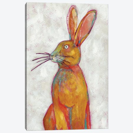 Woodland Friends II Canvas Print #ZAR140} by Chariklia Zarris Art Print