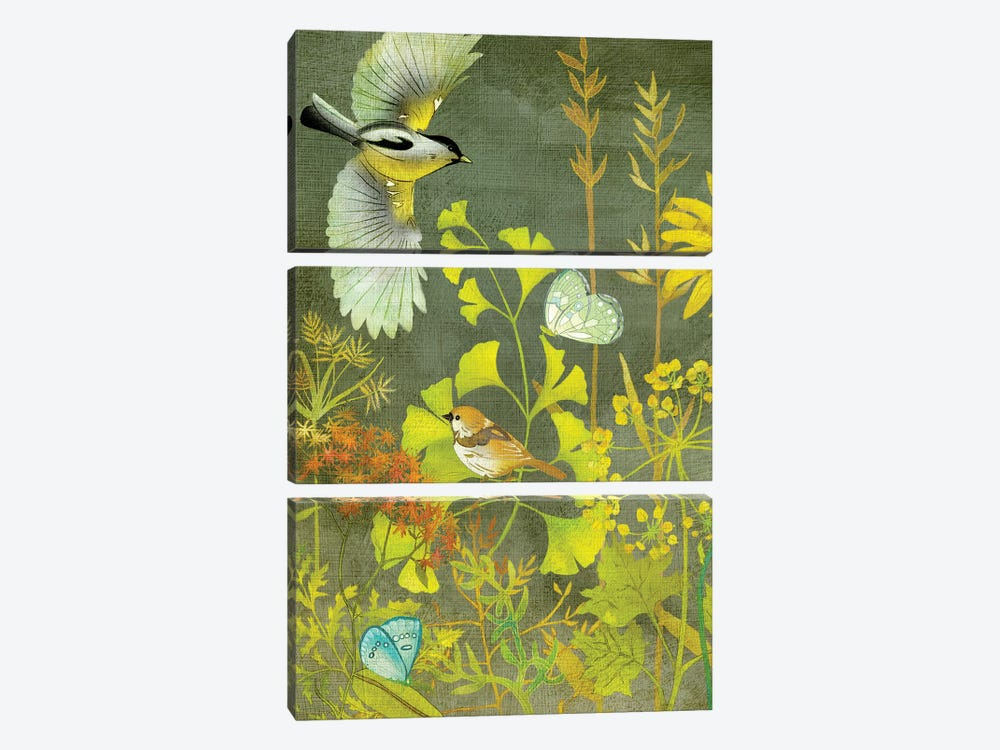 Birding II by Chariklia Zarris 3-piece Canvas Artwork