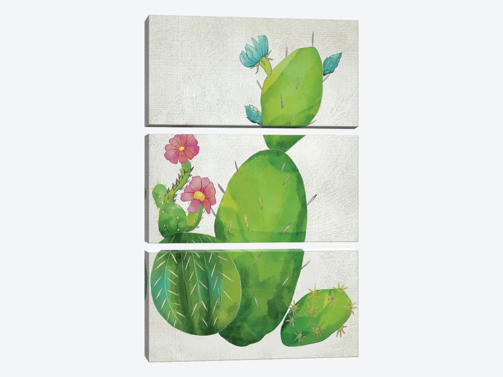 Cacti Collection I by Chariklia Zarris 3-piece Canvas Art Print