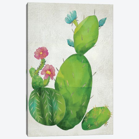 Cacti Collection I Canvas Print #ZAR148} by Chariklia Zarris Canvas Art Print