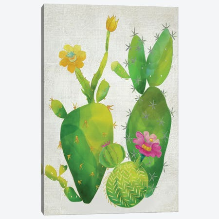Cacti Collection II Canvas Print #ZAR149} by Chariklia Zarris Canvas Print