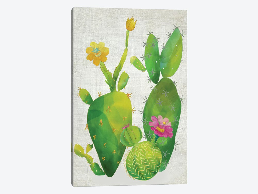 Cacti Collection II by Chariklia Zarris 1-piece Canvas Artwork