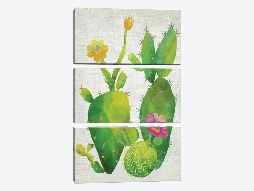 Cacti Collection II by Chariklia Zarris 3-piece Canvas Artwork