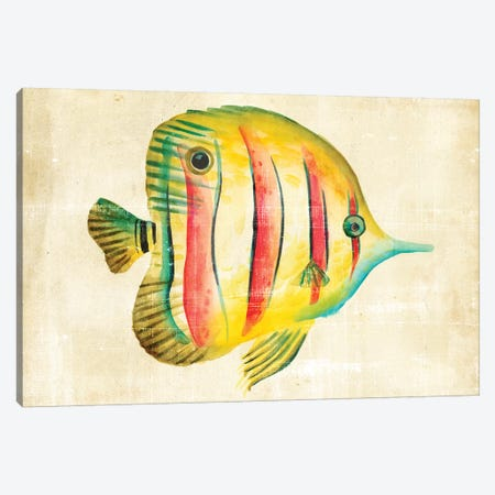 Aquarium Fish III Canvas Print #ZAR14} by Chariklia Zarris Art Print
