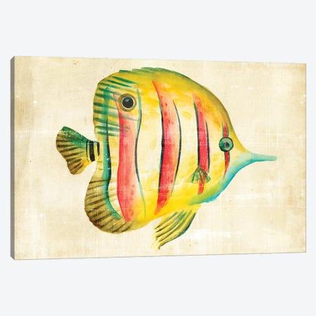Aquarium Fish III Canvas Print #ZAR14} by Chariklia Zarris Art Print