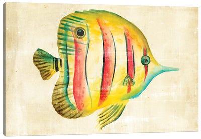 Aquarium Fish III Canvas Art Print