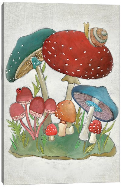 Mushroom Collection I Canvas Art Print