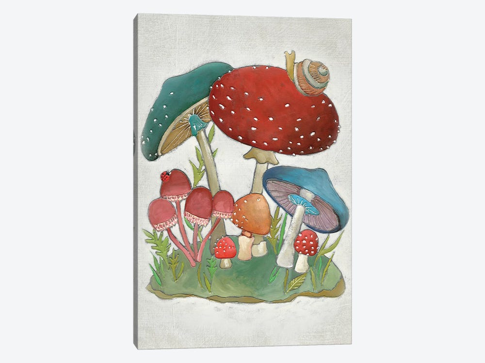 Mushroom Collection I by Chariklia Zarris 1-piece Canvas Art