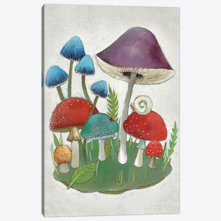 Mushroom Collection II Canvas Print #ZAR155} by Chariklia Zarris Art Print