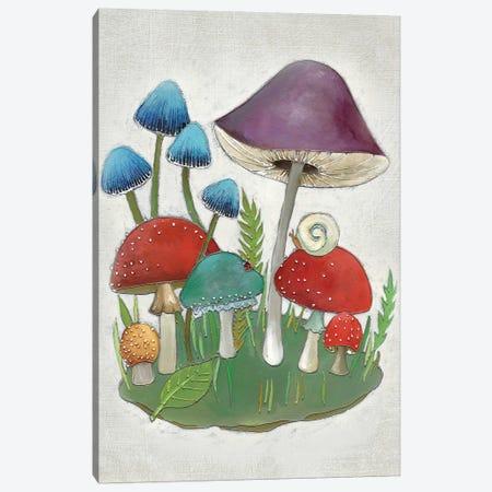 Mushroom Collection II Canvas Print #ZAR155} by Chariklia Zarris Art Print