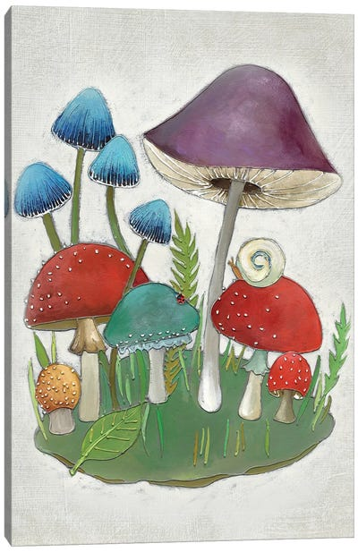 Mushroom Collection II Canvas Art Print
