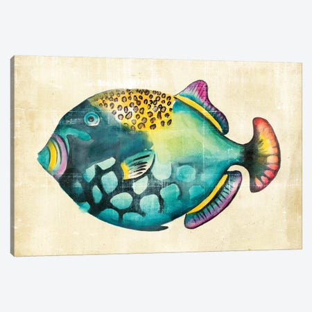 Aquarium Fish IV Canvas Print #ZAR15} by Chariklia Zarris Art Print