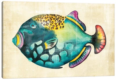 Aquarium Fish IV Canvas Art Print