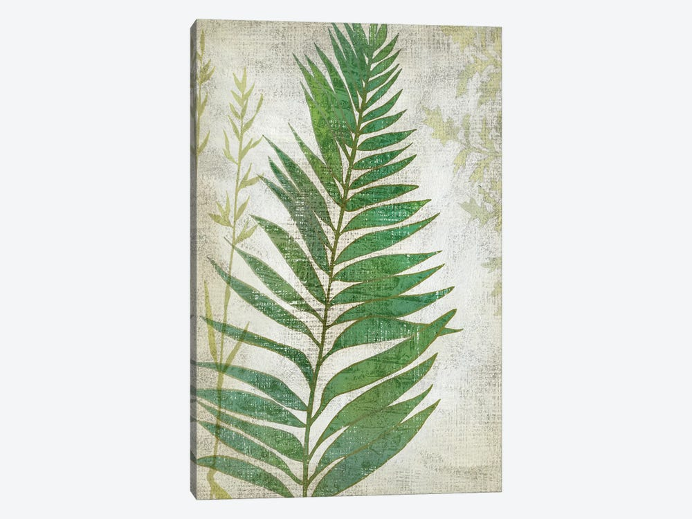Frond I by Chariklia Zarris 1-piece Canvas Print