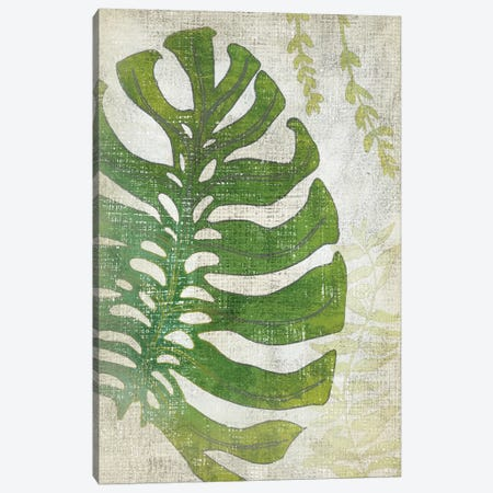 Frond III Canvas Print #ZAR190} by Chariklia Zarris Canvas Artwork