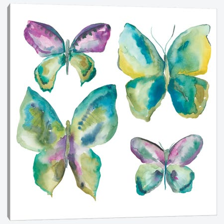 Jeweled Butterflies I Canvas Print #ZAR196} by Chariklia Zarris Canvas Art Print