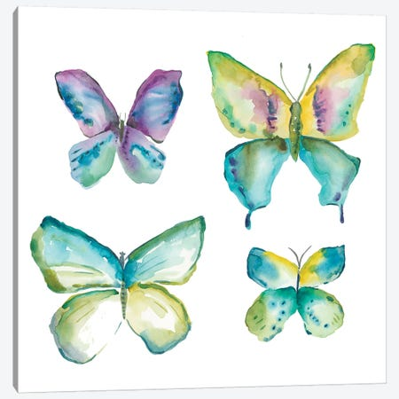 Jeweled Butterflies II Canvas Print #ZAR197} by Chariklia Zarris Art Print