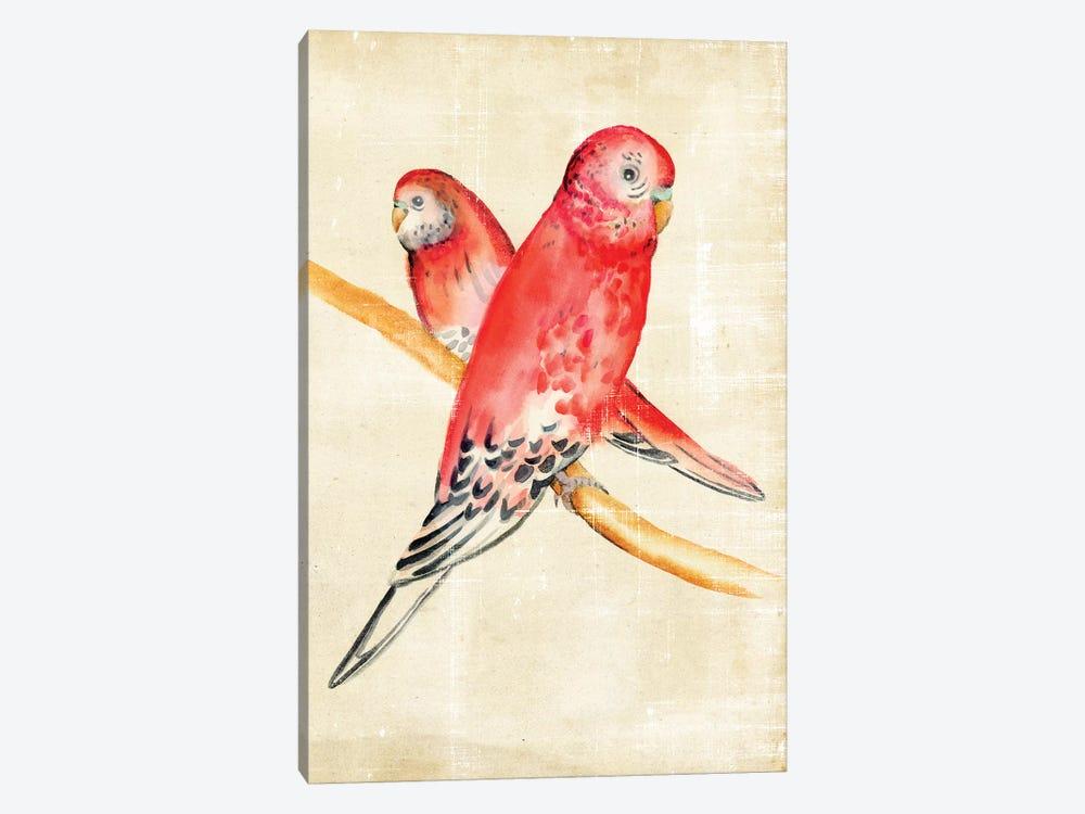 Fanciful Birds I by Chariklia Zarris 1-piece Canvas Print