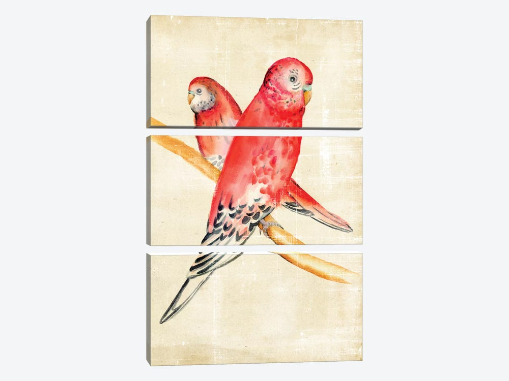 Fanciful Birds I 3-piece Canvas Art Print