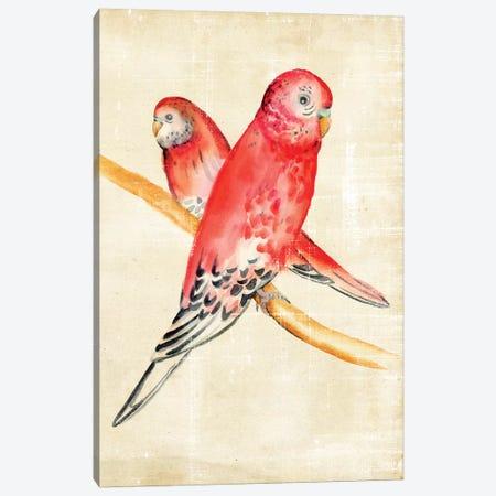 Fanciful Birds I Canvas Print #ZAR23} by Chariklia Zarris Canvas Print