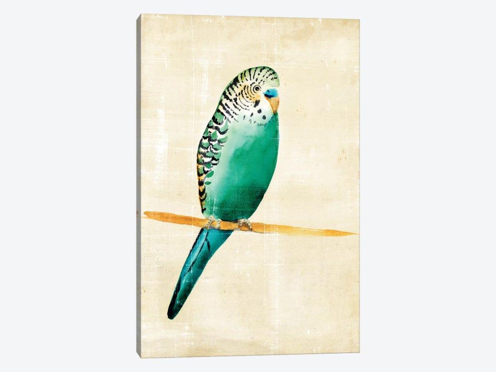 Fanciful Birds II by Chariklia Zarris 1-piece Canvas Art