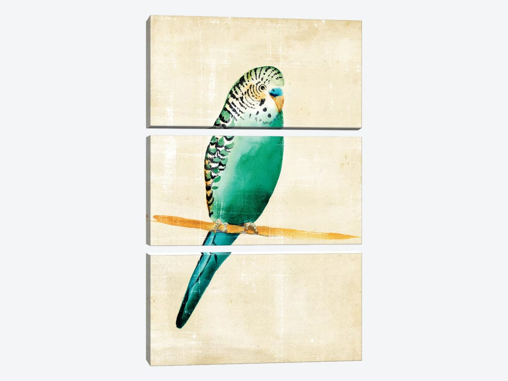Fanciful Birds II by Chariklia Zarris 3-piece Canvas Artwork