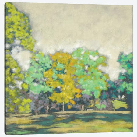 Treeline II Canvas Print #ZAR262} by Chariklia Zarris Canvas Artwork
