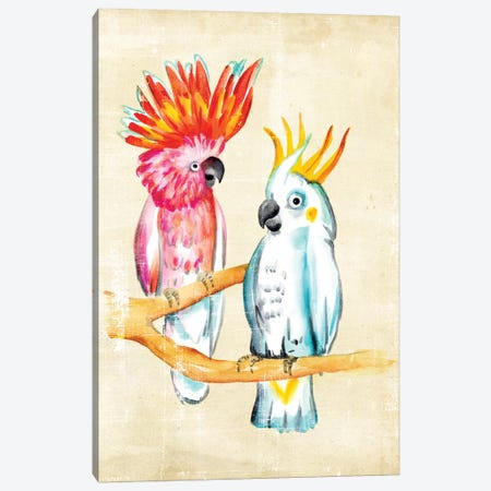 Fanciful Birds IV Canvas Print #ZAR26} by Chariklia Zarris Canvas Wall Art
