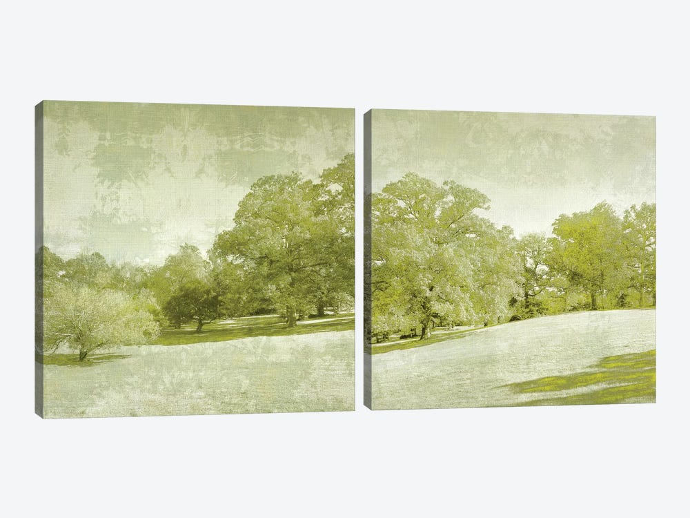 Beryl Landscape Diptych by Chariklia Zarris 2-piece Canvas Wall Art