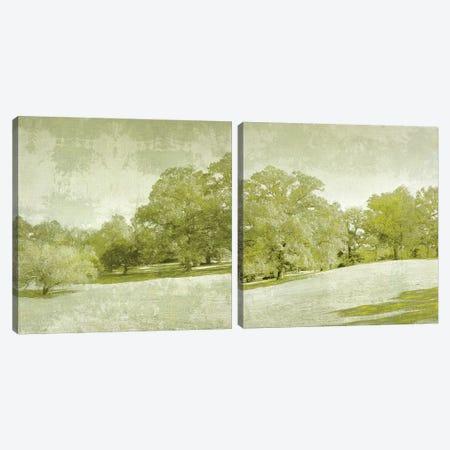 Beryl Landscape Diptych Canvas Print Set #ZAR2HSET001} by Chariklia Zarris Art Print