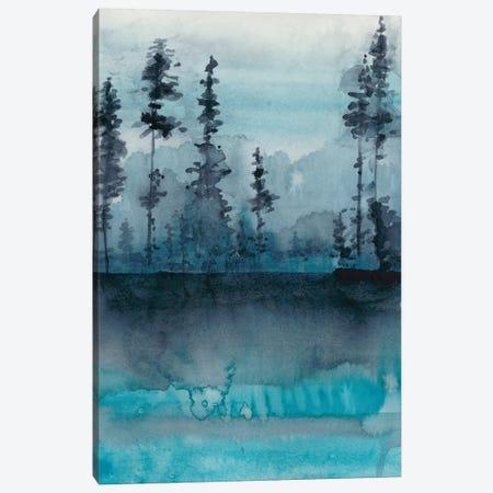 Winter Woods II Canvas Print #ZAR349} by Chariklia Zarris Canvas Art Print