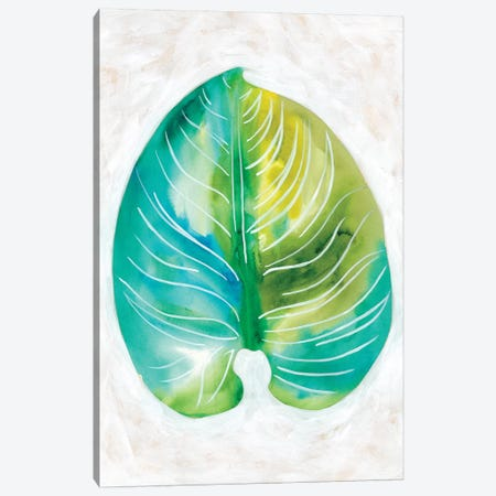 Ocean Side Palms I Canvas Print #ZAR375} by Chariklia Zarris Canvas Print
