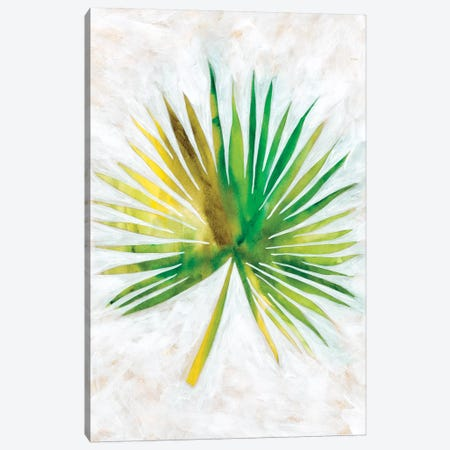 Ocean Side Palms II Canvas Print #ZAR376} by Chariklia Zarris Canvas Art Print