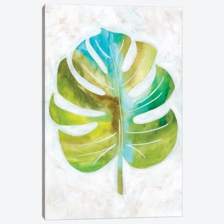 Ocean Side Palms III Canvas Print #ZAR377} by Chariklia Zarris Canvas Print