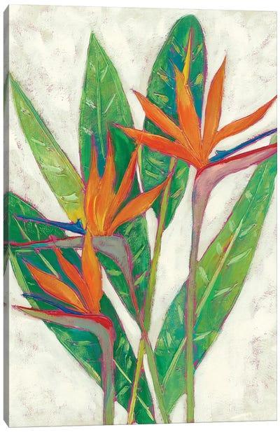 Paradise Vacation I Canvas Art Print