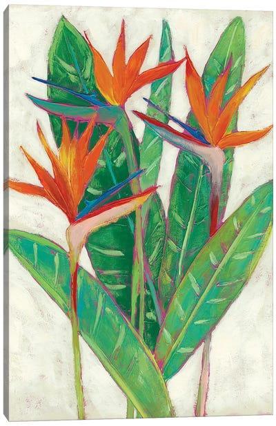 Paradise Vacation II Canvas Art Print