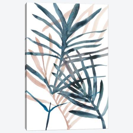 Panama Palms II Canvas Print #ZAR415} by Chariklia Zarris Canvas Artwork