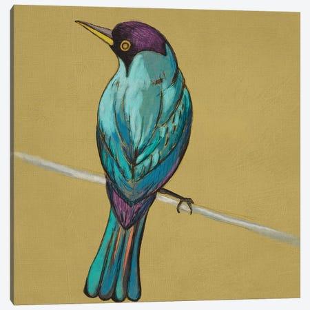 Winged Sketch I On Ochre Canvas Print #ZAR438} by Chariklia Zarris Art Print