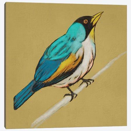 Winged Sketch II On Ochre Canvas Print #ZAR440} by Chariklia Zarris Canvas Wall Art