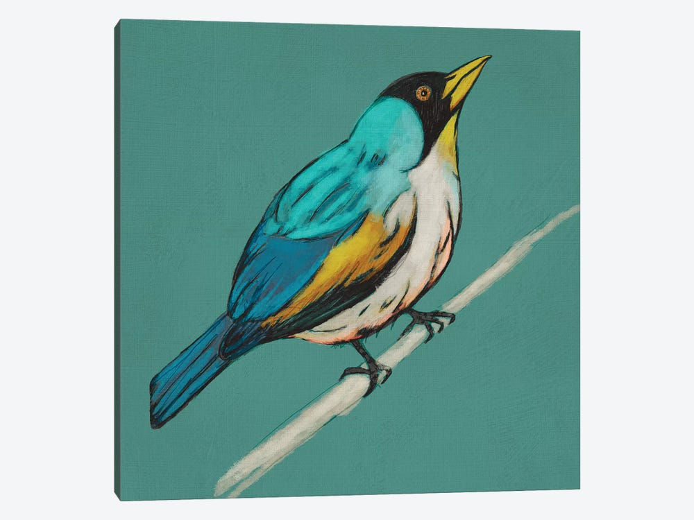 Winged Sketch II On Teal by Chariklia Zarris 1-piece Canvas Artwork