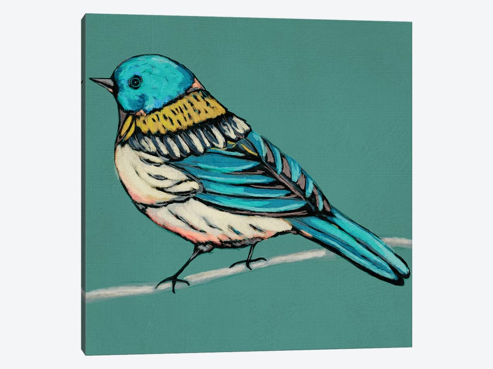 Winged Sketch III On Teal by Chariklia Zarris 1-piece Canvas Artwork