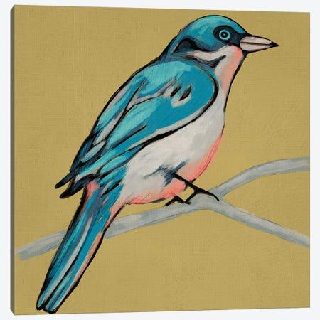 Winged Sketch IV On Ochre Canvas Print #ZAR444} by Chariklia Zarris Art Print