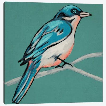 Winged Sketch IV On Teal Canvas Print #ZAR445} by Chariklia Zarris Canvas Art Print