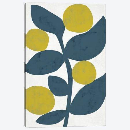 Branch II Canvas Print #ZAR460} by Chariklia Zarris Canvas Artwork