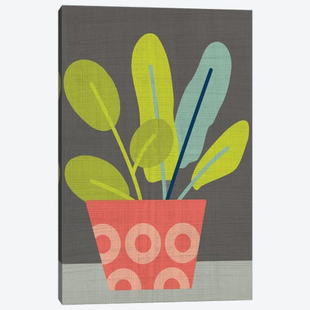 Clay Pot III Canvas Print #ZAR467} by Chariklia Zarris Canvas Art Print